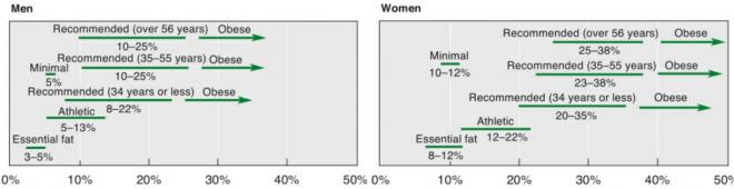 Современная таблица содержания жира